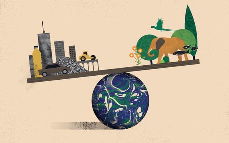 Trái Đất giờ đã có nhiều vật thể nhân tạo hơn tất thảy sinh vật sống