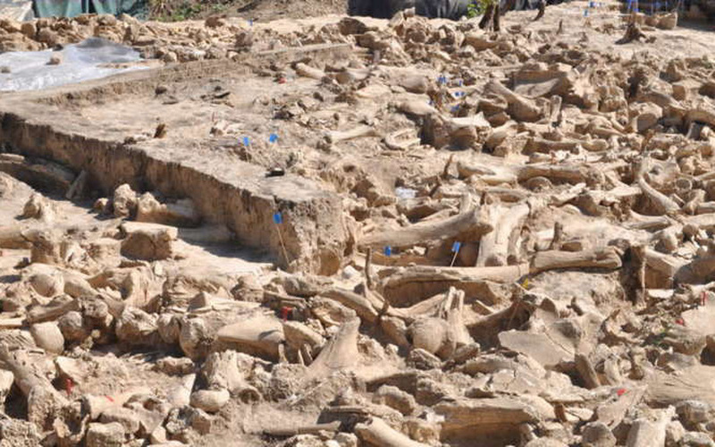 Điểm lại những khám phá khảo cổ học ấn tượng nhất năm 2020