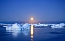 Nghiên cứu: Nam Cực đang nóng lên nhanh hơn gấp 3 lần so với phần còn lại của thế giới