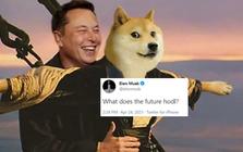 Nhà đầu tư Dogecoin toàn thế giới nín thở, trên tay app giao dịch tiền số đã mở sẵn chờ talkshow của Elon Musk tối nay