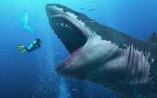 Cá mập khổng lồ Megalodon dĩ nhiên có thật, thậm chí ccó thể còn lớn hơn chúng ta nghĩ