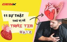 Quiz Sinh học: 11 sự thật về trái tim con người