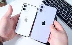 """iPhone 12 sẽ nối tiếp chiến lược """"hạng hai"""" từng được Tim Cook áp dụng cho Apple Watch SE, iPad Air và iPhone XR/11"""
