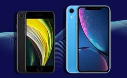 Dù có giá đắt hơn iPhone 11, iPhone 12 vẫn gián tiếp giúp Apple tung cú đấm mạnh nhất vào lãnh địa Android