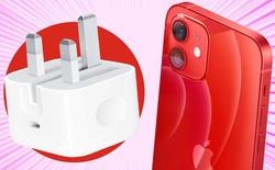 Hóa ra loại bỏ củ sạc trên iPhone 12 chẳng ích lợi mấy với môi trường