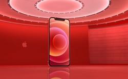 Mời tải về bộ ảnh nền độc quyền của iPhone 12 vừa ra mắt