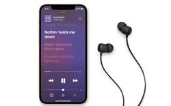 Quyết định cắt giảm phụ kiện của iPhone 12 vì môi trường đang giúp Apple bán được nhiều tai nghe không dây hơn