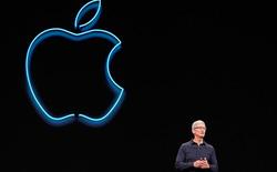 Apple Q4/2020: Hầu hết mảng kinh doanh đều tăng trưởng mạnh, trừ iPhone