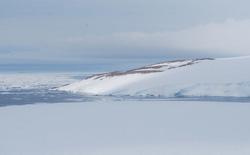 """Băng tan ở Nam Cực làm lộ ra """"xác ướp"""" 800 năm tuổi vẫn còn nguyên vẹn của chim cánh cụt"""