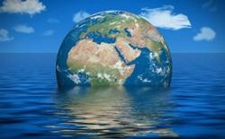 Đại dương đang giống như một chiếc bánh nhiều lớp và điều này quả thực nguy hiểm với toàn bộ hệ sinh thái