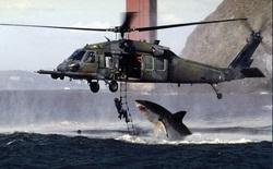 Bức ảnh cá mập nhảy lên khỏi mặt nước sắp ngoạm người đàn ông sau 19 năm vẫn khiến dân mạng thót tim và tò mò về số phận nạn nhân