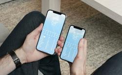 """Thương gia Việt """"ghẻ lạnh"""" iPhone 12 mini: iPhone 12 Pro Max bày bán tràn lan, iPhone 12 mini không một ai dám nhập"""