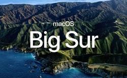 """Bản cập nhật macOS Big Sur khiến một số mẫu MacBook Pro cũ bị biến thành """"cục gạch"""""""