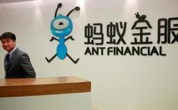 Vì sao Trung Quốc quyết định đình chỉ vụ IPO của Ant Group?