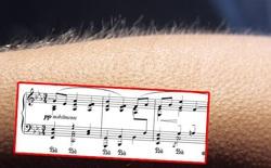Khoa học giải thích: Tại sao chúng ta nổi da gà khi nghe nhạc?