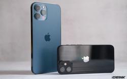 Kết quả bầu chọn này cho thấy nếu muốn chụp ảnh thì iPhone 12 mini là đủ rồi, cần gì đến Pro Max