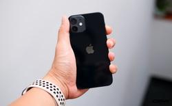 Tại sao iPhone 12 và iPhone 12 Mini ít được chuộng tại Việt Nam?