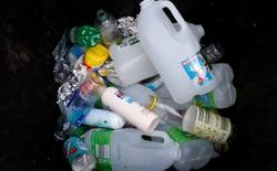Nhựa chứa 144 hợp chất làm rối loạn hormone và chúng sẽ gây hại cho nhiều thế hệ