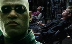 """The Matrix: Ma trận là ảo, nhưng tại sao chết trong ma trận thì cũng """"ngỏm"""" luôn trong thực tế?"""