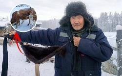 Nga: Bác nông dân tự làm áo lót để bò mặc cho khỏi lạnh
