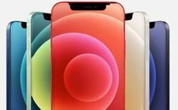 Apple đang tìm cách tạo ra iPhone hoàn toàn không viền bằng cách ẩn mạch điều khiển