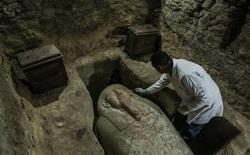 Ai Cập: Phát hiện quan tài thần bầu trời Horus trong ngôi mộ cổ 3000 năm tuổi