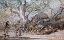 Các nhà khoa học tìm ra nguyên nhân thực sự của sự tuyệt chủng động vật khổng lồ ở Úc