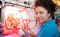 NASA bắt đầu thử nghiệm nuôi cấy và phát triển bộ phận cơ thể người trên trạm vũ trụ ISS
