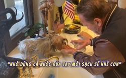 """""""Kẻ hủy diệt"""" Arnold Schwarzenegger tự cách ly tại nhà với thú cưng để tránh Covid-19, quay cả video dạy """"boss"""" cún rửa tay đúng cách"""