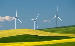 Mỹ: Lần đầu tiên sản lượng điện gió vượt thủy điện, cho thấy tiềm năng khổng lồ của gió trời