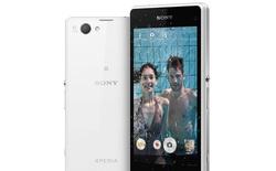 Smartphone giá rẻ Sony S20A bất ngờ lộ toàn bộ thông số