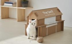 Hộp TV Samsung có thể tái sử dụng làm ổ cho mèo