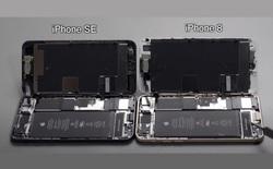 """Cận cảnh """"nội thất"""" iPhone SE mới: Gần như giống hệt iPhone 8, đến mức có thể đổi linh kiện cho nhau"""
