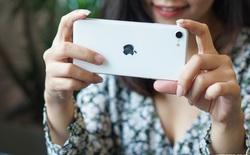 Trải nghiệm nhanh iPhone SE 2020: Quái vật không sừng đội lốt cừu non