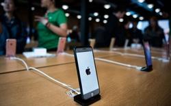 iPhone SE 2020 đang là canh bạc thành công của Apple tại Trung Quốc nhưng tất cả chỉ là tạm thời