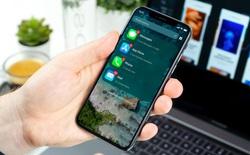 Rò rỉ giao diện mới của iOS 14: tùy chọn hình nền thú vị hơn, màn hình chính hoàn toàn mới hỗ trợ widget