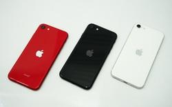 Liệu iPhone SE mới của Apple có tận diệt được smartphone giá rẻ từ Trung Quốc?