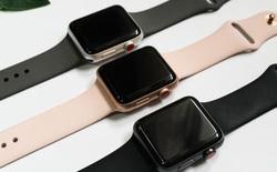 """Mua Apple Watch 450.000 đồng, khách """"đắng lòng"""" vì gian thương gửi món đồ không ngờ tới"""