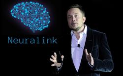 """Giám đốc mảng AI của Facebook """"cà khịa"""" Elon Musk chỉ chém gió là giỏi chứ chẳng hiểu gì về trí tuệ nhân tạo cả"""