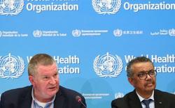 WHO lên tiếng về nguồn gốc của virus gây đại dịch Covid-19