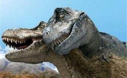 """Nghiên cứu mới cho thấy khủng long bạo chúa Tyrannosaurus dựa vào giác quan thứ sáu để """"yêu""""?"""