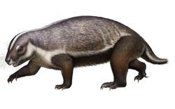 """Loài """"quái vật điên"""" ở Madagascar từng sống cạnh những con khủng long cuối cùng"""