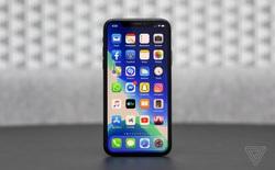 Apple cho biết tổng doanh số giao dịch trên App Store đạt tới 517 tỷ USD vào năm ngoái