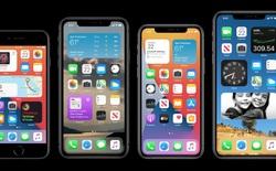 iOS 14 chính thức ra mắt với giao diện hoàn toàn mới, iPhone 6s 5 năm tuổi vẫn được cập nhật