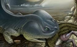100 triệu năm trước Nam Cực từng tồn tại loài kì nhông có thân hình còn to lớn hơn cả một chiếc xe ô tô