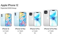 Phải chăng đây là thiết kế cuối cùng của iPhone 12 trước ngày ra mắt?