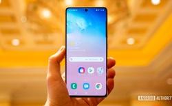 Phiên bản Galaxy S20 Fan Edition giá rẻ có thể sẽ được Samsung ra mắt vào tháng 10