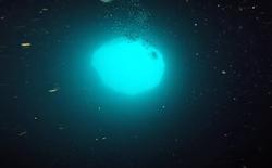 """Các nhà khoa học tiến hành nghiên cứu những """"hố xanh"""" nằm dưới đáy đại dương, phát hiện ra được nhiều điều thú vị"""