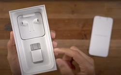 Giữa tin đồn iPhone 12 bỏ củ sạc, Apple thăm dò người dùng về củ sạc iPhone cũ