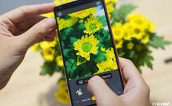 BKAV cho shop bán hàng online mượn Bphone B86 để review chụp ảnh sản phẩm